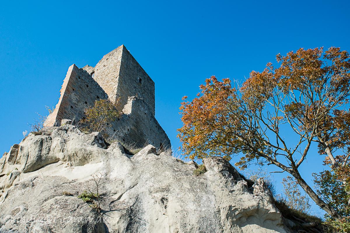 Vista sul castello.