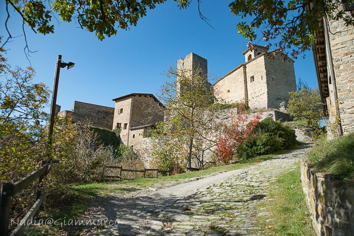 Vista d'insieme del Castello di Carpineti